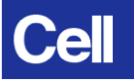 CellLogo