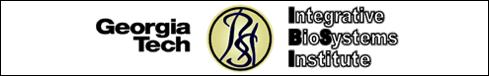 IBSI_Logo