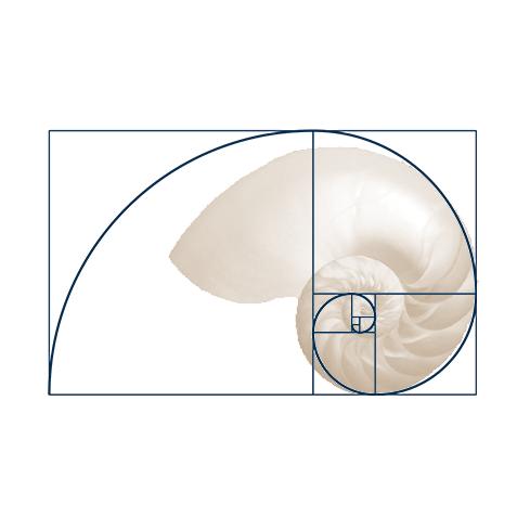 MathematicalModelsInBiology_489x489